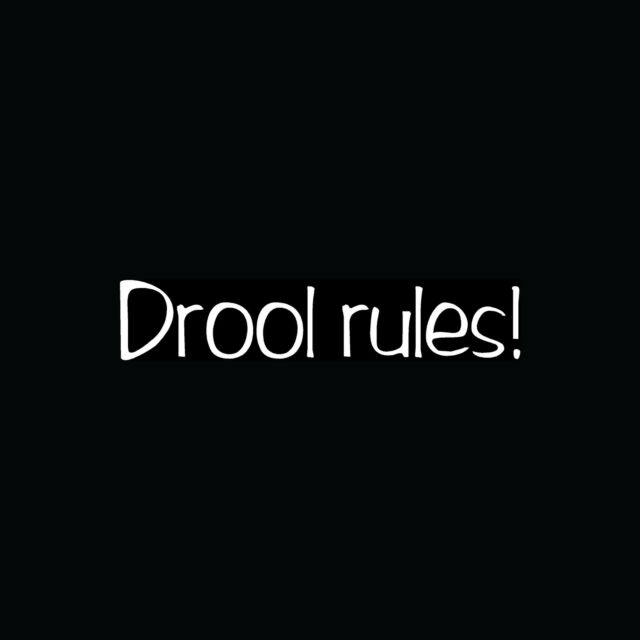 DROOL RULES! Sticker Funny Car Window Decal Dog Lover Vinyl Cute Puppy Family :)