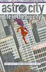 Astro City: Life in the Big City by Kurt Busiek (Paperback, 2011)