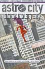 Astro City: Life in the Big City by Kurt Busiek (Paperback, 2011)
