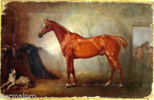 MUSEUM-QUALITY-OIL-PAINTING-PRINT-HORSE-EQUINE-CANVAS-READY-TO-HANG