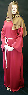 Christmas Nativity-Bible-LADIES RELIGIOUS COSTUME Fancy Dress All Sizes
