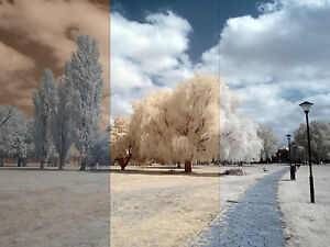 Infrared-camera-False-Color-instructions-and-action-CD