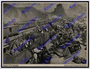Grotemeyer-Bagdadbahn-Bahnhof-Hidja-Tschiftchan-Kamele-Karawane-Transport-1918