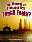 Is There a Future for Fossil Fuels? by Ellen Rodger (Paperback, 2010)