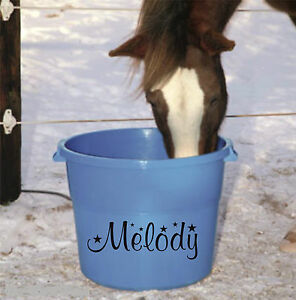 Personalised-name-STICKER-for-horse-accessories-feed-water-buckets-grooming-kit