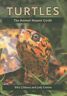 Turtles: The Animal Answer Guide by Judy Greene, Whit Gibbons (Hardback, 2009)