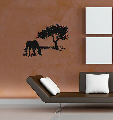 WALL VINYL STICKER DECALS ART MURAL LONELY HORSE ON THE FIELD  N99