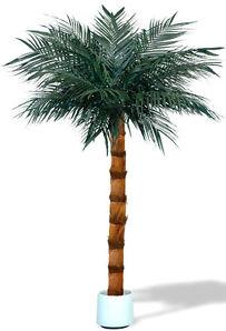 ARECA Palme 200-250cm -direkt vom Hersteller- Kunstpalme,Kunstpflanze,Dekopalme