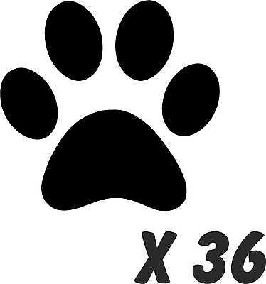 36 PAW PRINT WALL OR CAR STICKERS any colour dog removable art