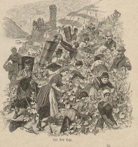 Wine-Grape-Harvest-Festival-5-Images-w-text-German-Antique-Art-Print