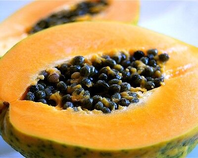Papaya Fruit - CARICA PAPAYA -15 Seeds Pawpaw Vegetables/ Fruits