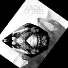 Visions of Trees - (2012)