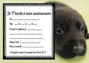 carte anniversaire chien labrador