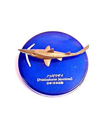 Kaiyodo Takara Tomy Yujin Deep Sea Ocean Japanese Saw Shark Fish Figure Rare!