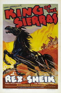 King-of-the-Sierras-1938-Rex-and-Sheik-Horses-Cult-Western-movie-poster-24x36