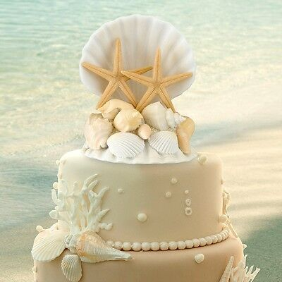 Seashell Wedding Cake Top Topper Beach Theme Wedding Sea Shell