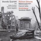 Strauss: Metamorphosen; Schönberg: Verklärte Nacht (1999)