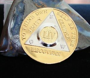 Alcoholics Anonymous Gold Silver Plated 54 Year HOW OLD STYLE Medallion Coin