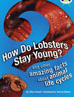 How Do Lobsters Stay Young?: NF Brown A/3c by Jillian Powell (Paperback, 2012)