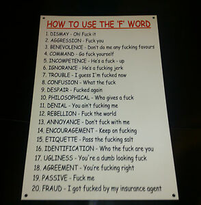 HOW-TO-USE-THE-F-WORD-FUNNY-SIGN-Novelty-Rude-birthday-christmas-present