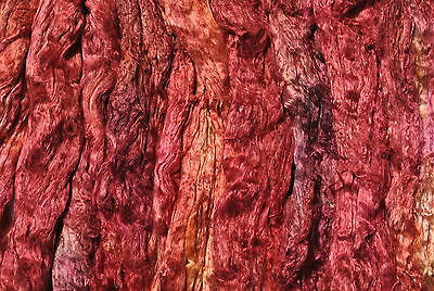 Heidifeathers® Mulberry Silk tops - 'Antique Red' Hand / Space dyed / painted.