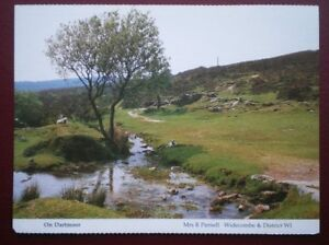 POSTCARD DEVON ON DARTMOOR  A FEW SHEEP HAVING A REST - Tadley, United Kingdom - Full Refund less postage if not 100% satified Most purchases from business sellers are protected by the Consumer Contract Regulations 2013 which give you the right to cancel the purchase within 14 days after the day you receive th - Tadley, United Kingdom