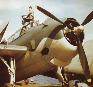 US-NAVY-TBF-AVENGER-COLOR-PHOTO-WW2-WWII