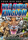 Wild Animal Kingdom - From Cute To Killer (DVD, 2010, 4-Disc Set, Box Set)