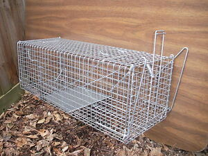 Aust-Made-Animal-Wire-Cage-Trap-Feral-Cat-Possum-Rabbit-Fox-Bird-Pest-Control