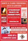Extraordinary Projects for Ordinary People: Do-It-Yourself Ideas from the People Who Actually Do Them by Eric J. Wilhelm (Paperback, 2012)