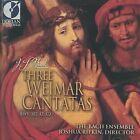 Johann Sebastian Bach - Bach: Weimar Cantatas (2001)