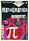 Introducing Mathematics: A Graphic Guide by Ziauddin Sardar, Jerry Ravetz (Paperback, 2011)
