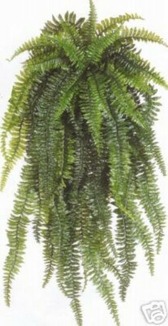 "BOSTON FERN 60"" BUSH PLANT SILK ARTIFICIAL PATIO PORCH PALM SAGO FLOWER TREE 5'"