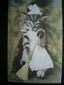 POSTCARD TIRED OUT NO 42  CAT WITH A BROOM - <span itemprop=availableAtOrFrom>Tadley, United Kingdom</span> - Full Refund less postage if not 100% satified Most purchases from business sellers are protected by the Consumer Contract Regulations 2013 which give you the right to cancel the purchase w - Tadley, United Kingdom