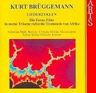 Kurt Bruggemann - Brüggemann: The Distant Flute; In meine Träume rufen die Trommeln von Afrika (2000)