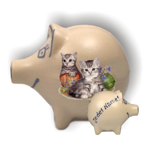Spardose spielende Kätzchen Katze /& Maus Katzenkitten Sparschwein mit Namen