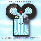 The Chameleons UK - What Does Anything Mean? Basically (2010)
