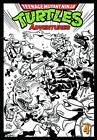 Teenage Mutant Ninja Turtles Adventures: Volume 4 by Dean Clarrain, Ryan Brown (Paperback, 2013)