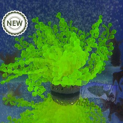 1pc fish tank aquarium decoration/ ornament, silicone sea anemone green