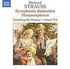 Richard Strauss - : Symphonia Domestica; Metamorphosen (2009)