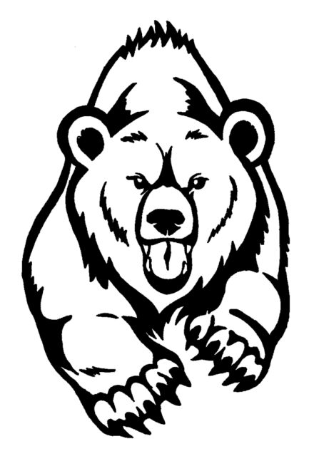 BEAR STICKER DECAL FOR CAR, TRAILER, 4WD BRAND NEW