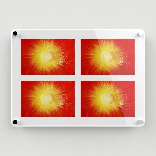 """nivel libre imágenes posee 4-6/""""x9/"""" 095 Montado en la Pared Acrílico Multi Marco de fotos"""