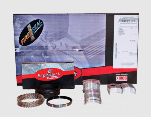 *Engine Re-Ring Re-Main Kit*  Dodge Ram Dakota Durango 239 3.9L V6  1999-2003