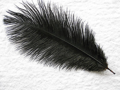 """Small Ostrich Feathers 2 x 10"""" 25cm Many Colours Listed"""