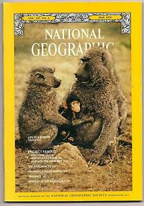 national-geographic-MAY-1975-BABOON