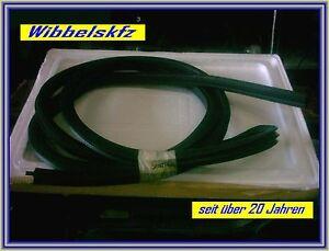 Seat-Ibiza-Bj-2000-Tuerdichtgummi-links-2-trg