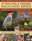 The Illustrated Practical Guide to Attracting and Feeding Backyard Birds : The Complete Book of Bird Feeders, Bird Tables, Birdbaths, Nest Boxes and Backyard Birdwatching by Jen Green (2009, Hardcover)