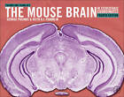 Paxinos and Franklin's The Mouse Brain in Stereotaxic Coordinates by Keith B. J. Franklin, George Paxinos (Hardback, 2012)