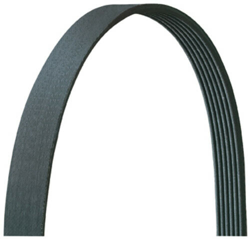 Drive-Rite 5060975DR Serpentine Belt