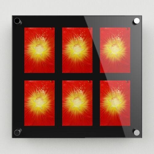 "040 Wall Mounted Acrylic Multi Photo Frame Holds 6-4/""x6/"" Images FREE Level"